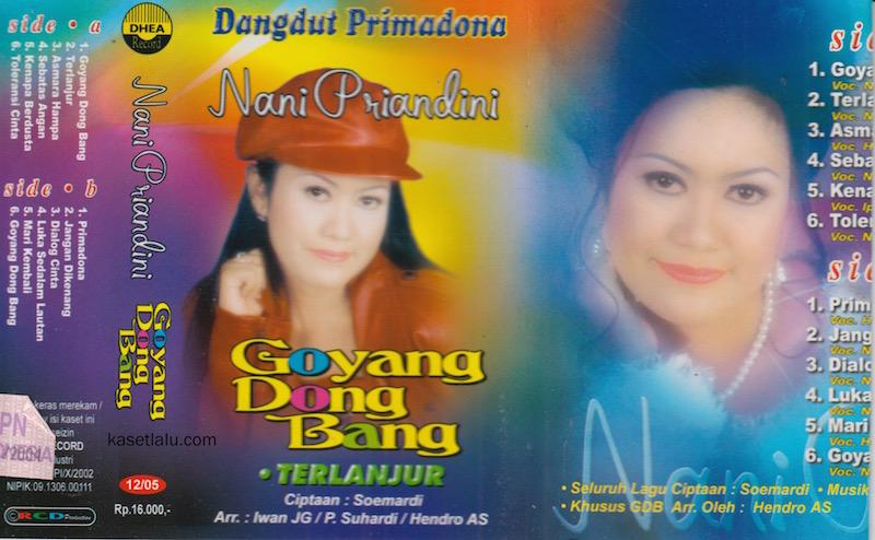 NANI PRIANDINI - GOYANG DONG BANG