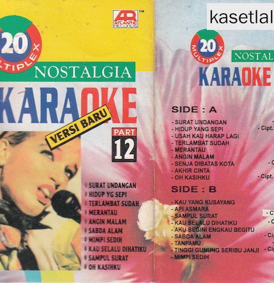 20 Multiplex nostalgia karaoke