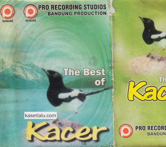 SUARA BURUNG KACER - THE BEST OF